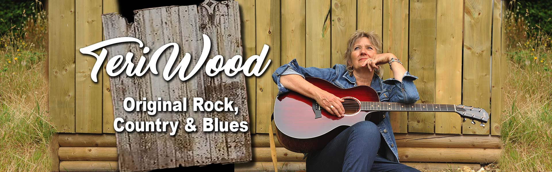 Nominated Recording Artist Singer Songwriter Teri Wood for hire